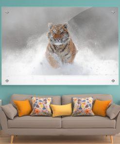 תמונת זכוכית נמר שלג לעיצוב הבית על קיר בסלון