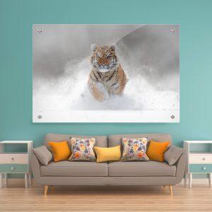 תמונת זכוכית נמר בשלג לעיצוב הבית על קיר בסלון