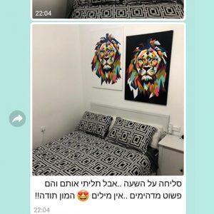 זוג קנבסים ביקורת טובה - אריה צבעוני שחור לבן