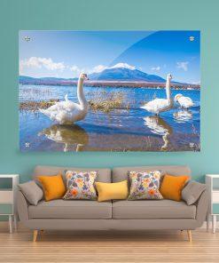 תמונת זכוכית לעיצוב הבית,בסלון ובכל פינה שתבחרו