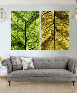 זוג תמונות קנבס לסלון לעיצוב הבית