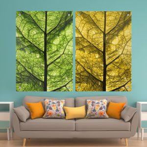 זוג תמונות זכוכית - תקריב עלים לעיצוב הבית על קיר בסלון
