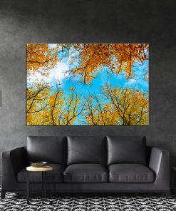 תמונת קנבס - עלי סתיו כנגד שמיים כחולים לסלון לעיצוב הבית