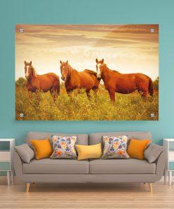 תמונת זכוכית - סוסי אדמה לעיצוב הבית על קיר בסלון