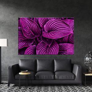 תמונת קנבס - תקריב עלים סגולים לסלון, לחדר שינה, למטבח ולכל פינה שתבחרו