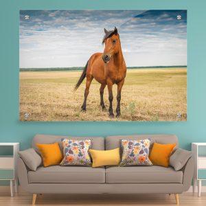תמונת זכוכית - סוס חושני לעיצוב הבית על קיר בסלון