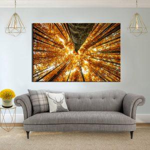 תמונת קנבס עצי אשור צהובים לסלון לעיצוב הבית