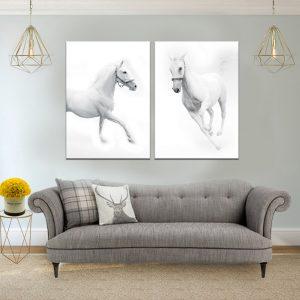 זוג תמונת סוסים אצילים לסלון לעיצוב הבית