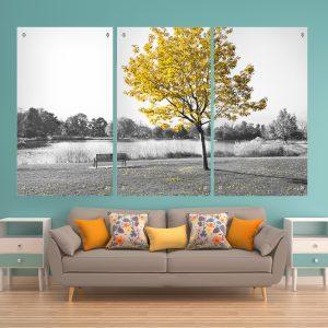 העץ הצהוב שחור לבן תמונות זכוכית