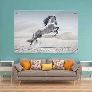 תמונת זכוכית זינוק הסוס לעיצוב הבית על קיר בסלון