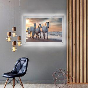 לייטבוקס תמונה מוארת - סוסים על הים לעיצוב הבית