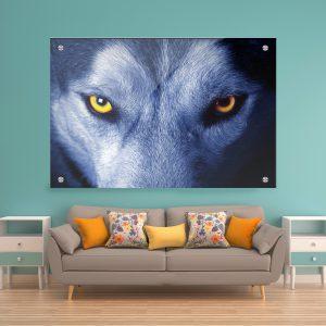 תמונת זכוכית עיניי זאב לסלון לעיצוב הבית
