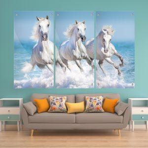 סוסים דוהרים בים זכוכית