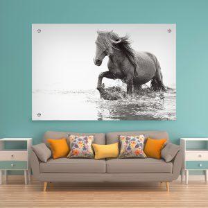 תמונת זכוכית סוס מים לסלון לעיצוב הבית