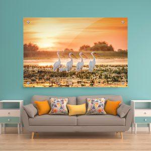 תמונת קנבסארבעה שקנאים לסלון לעיצוב הבית